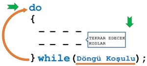 c# do while döngüsü